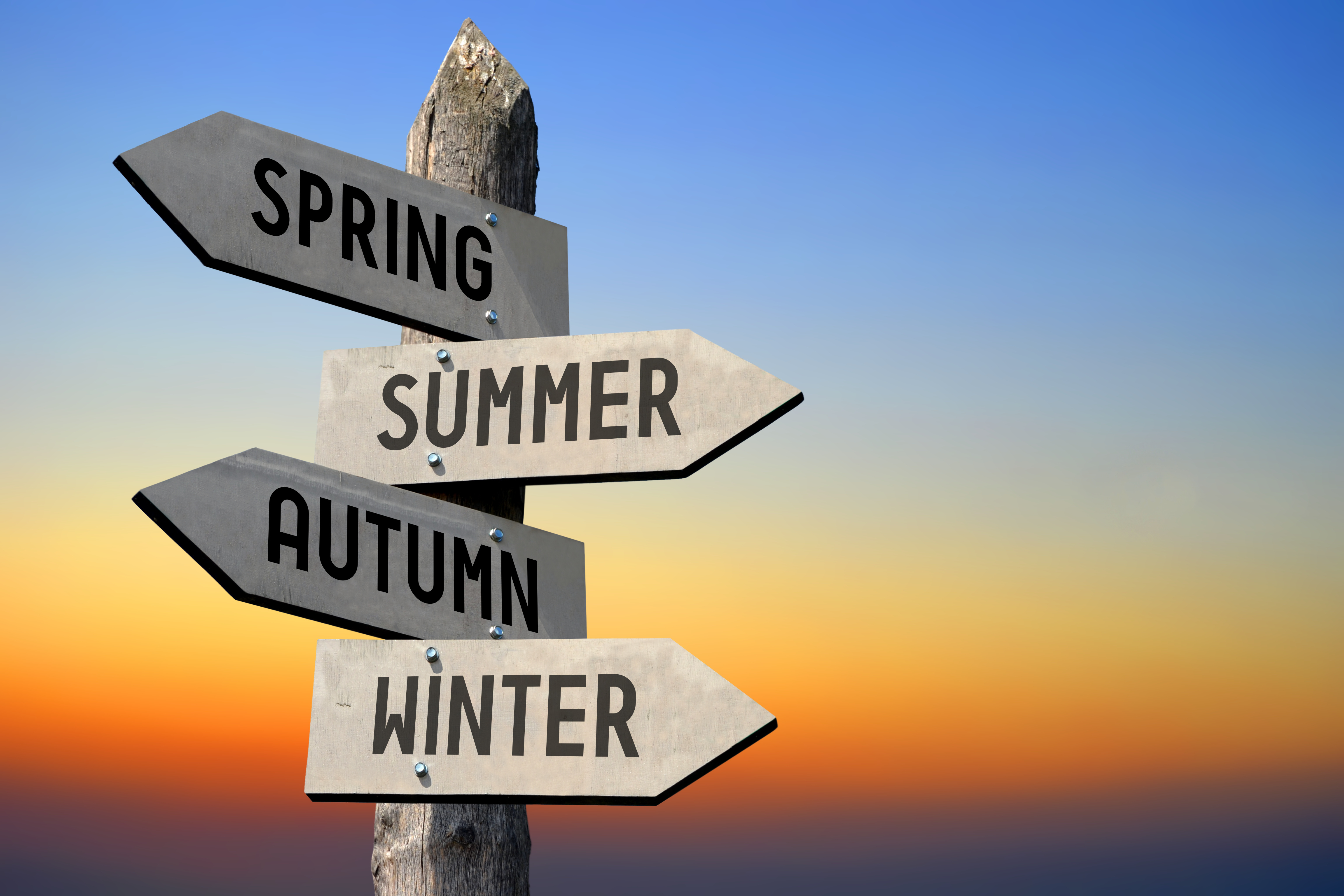 Spring, summer, autumn, winter signpost - Professional