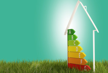 """""""Going green will pay dividends"""" 