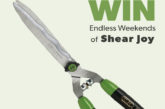 Win! C.K Golden Shears to be bagged!
